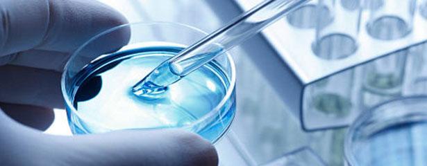 Bioethics Committee