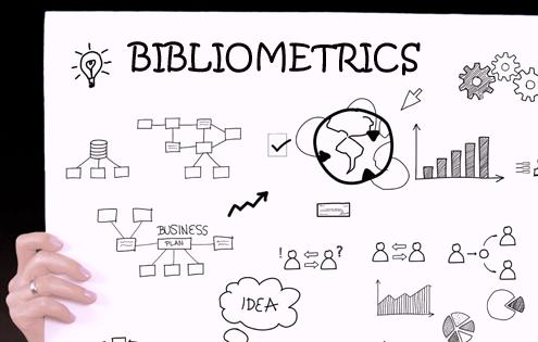 Nueva Página de Bibliometría