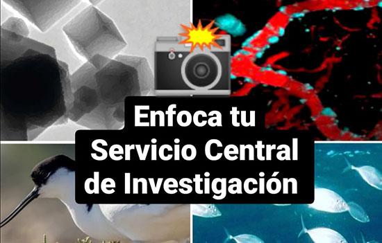 IMG Enfoca tus Servicios Centrales de Investigación